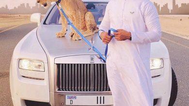 Photo of معلومات عن #سكان_الامارات_الاصلين 🇦🇪 السكان الغير مديونين للبنوك