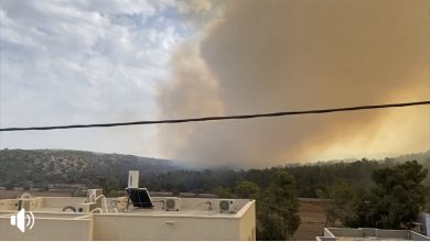 Photo of حريق هائل في احراش برطعة وصل الدخان الى سماء #كفرقرع وسماء وادي عارة