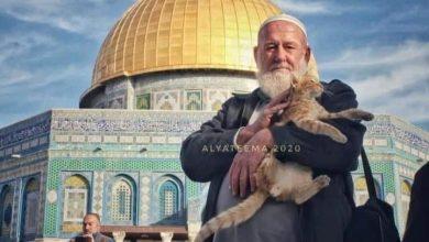 Photo of انتقل الى رحمته تعالى الحاج غسان يونس (ابو ايمن) 72 عامًا من قرية عارة