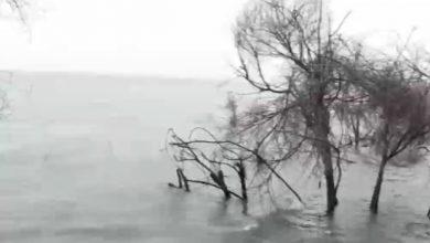 Photo of امطار الخير ترفع مستوى المياه في بحيرة طبريا