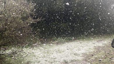 Photo of حالة الطقس: أجواء باردة وفرصة ضعيفة لهطول أمطار محليّة في بعض المناطق