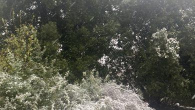 Photo of حاله الطقس: منخفض جوي ماطر تتأثر به البلاد