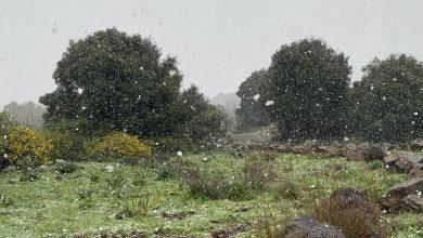 Photo of حالة الطقس: أجواء معتدلة ويطرأ إنخفاض طفيف على درجات الحرارة