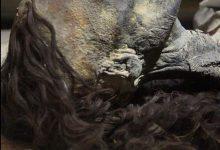 """Photo of صور مومياء الملكة """"تي"""" تشعل مواقع التواصل حيث أن شعرها ما زال على حاله"""