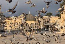 Photo of حالة الطقس: ارتفاع بدرجات الحرارة واحتمال ضعيف بتساقط أمطار